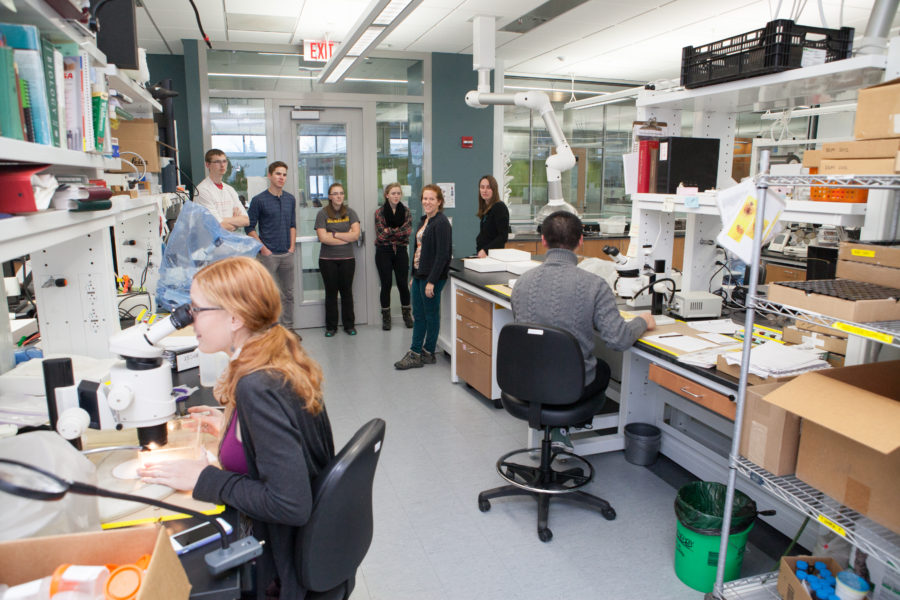 BioHouse members in a laboratory during their Energy Institute