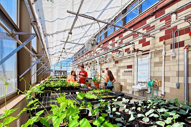 Leopold Hall Greenhouse