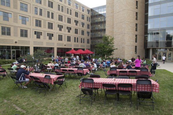 Catered picnic in Ogg hall courtyard.