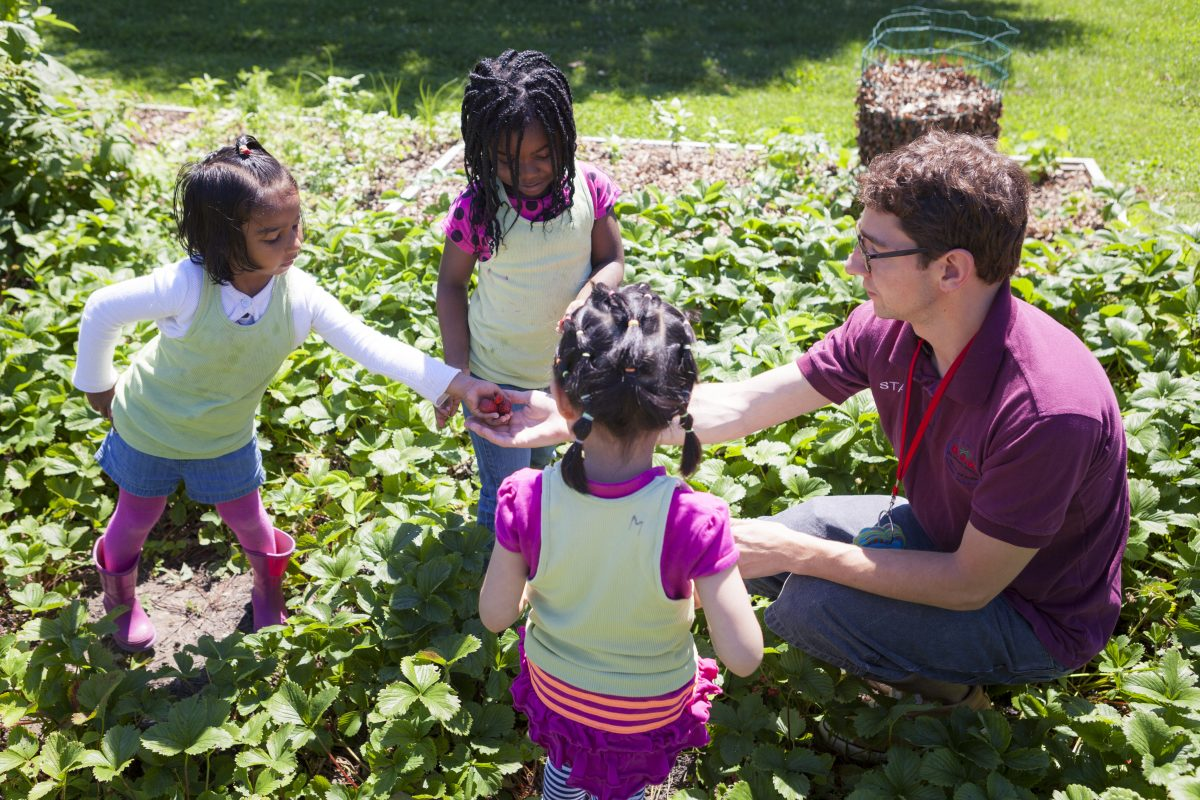 Picking strawberries in the Eagles' Wing Peace Garden.