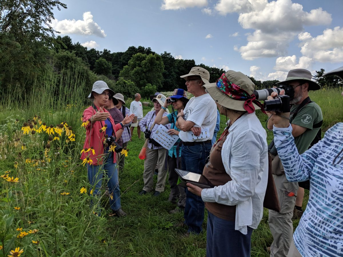 A group gathers new a wooded area to learn more about backyard pollinators in a field trip lead by Lakeshore Nature Preserve staff.