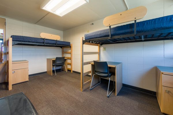 An interior view of a 2-Window Double room in Witte Residence Hall