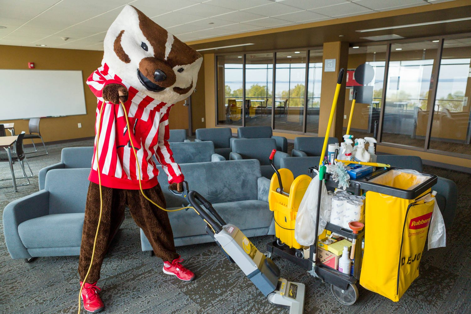 Bucky cleaning a lounge